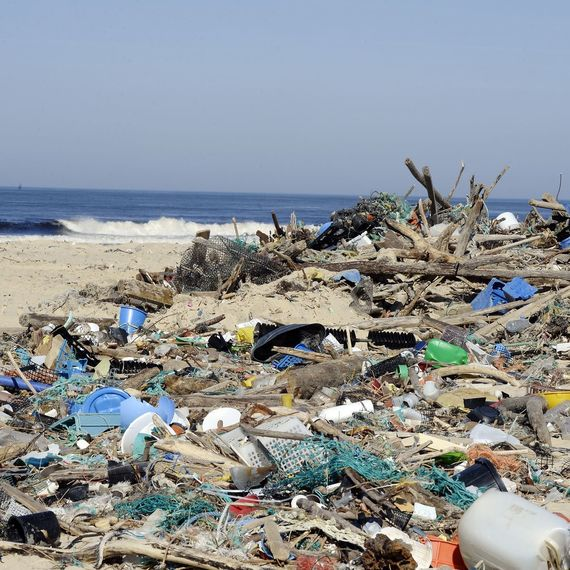 Environnement sans déchets